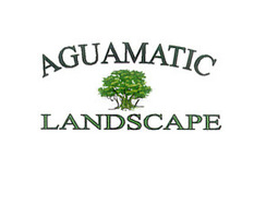 Specializing in Synthetic Turf and Landscaping in Albuquerque